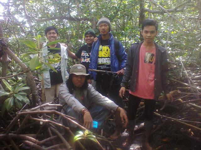 hutan bakau gonda campalagian