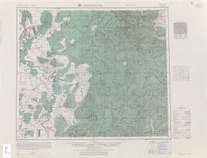 Thumbnail U. S. Army map nn40-5