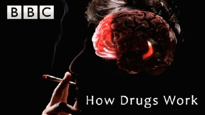 Jak dzia³aj± narkotyki / How Drugs Work (2011) PL.TVRip.XviD / Lektor PL