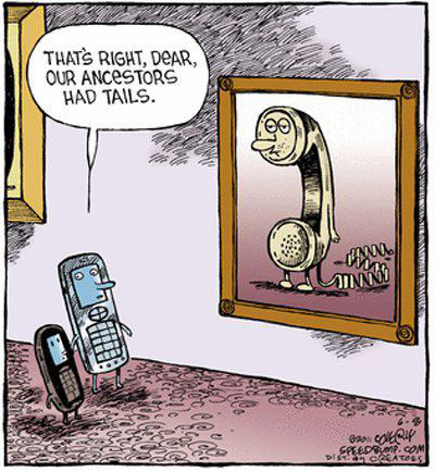 That's right dear, our ancestors had tails.