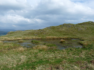 A small tarn on Loughrigg Fell