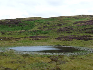 Arnsbarrow Tarn with Top O'Selside behind.