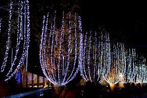 東京ミッドタウン≪ミッドタウン・ガーデン≫のイルミネーション2014