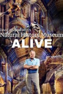 Bảo Tàng Lịch Sử Tự Nhiên Sống Của David Attenborough - David Attenboroughs Natural History Museum Alive poster