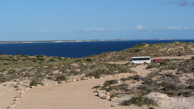 Stopping at one of Shark Bay's scenic lookouts.