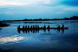 kaveri river - near talakadu - karnataka