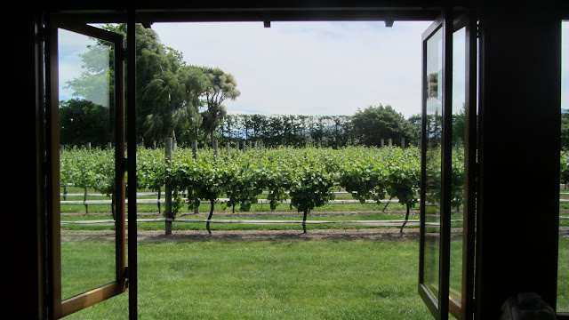 View from the tasting room at Forrest.