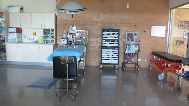 An operating theatre in the Australia Zoo Wildlife Hospital.