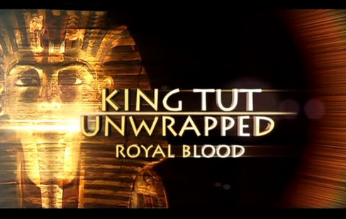 Tutanchamon prawda skrywana w grobowcu / King Tut Unwrapped (2010) PL.TVRip.XviD / Lektor PL