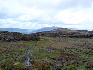 A boggy path to High Seat from Bleaberry Fell