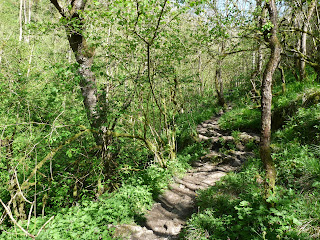 Its a lovely walk through the dale ... and on a nice sunny day like today ... it is one that should not be missed.