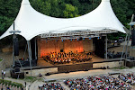 Daniel Barenboim - Das Waldbühnenkonzertdes West-Eastern Divan Orchestra