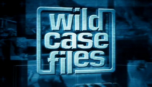 Wybryki przyrody Eksploduj±ce ¿aby / Wild Case Files Exploding Toads (2011) PL.TVRip.XviD / Lektor PL
