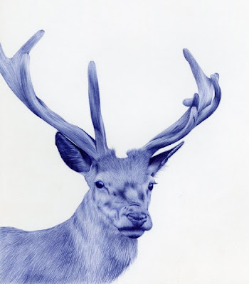 Photo-Realistic Portraits of Animals Drawn with Bic-Pen Seen On www.coolpicturegallery.us