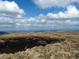 Artlecrag Pike summit bog