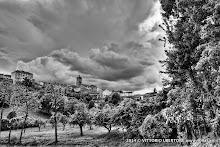 3 maggio 2014 Grana, Alfiano Natta, Grazzano Badoglio, Montachiaro,Montemagno d'Asti - fotografia di Vittorio Ubertone