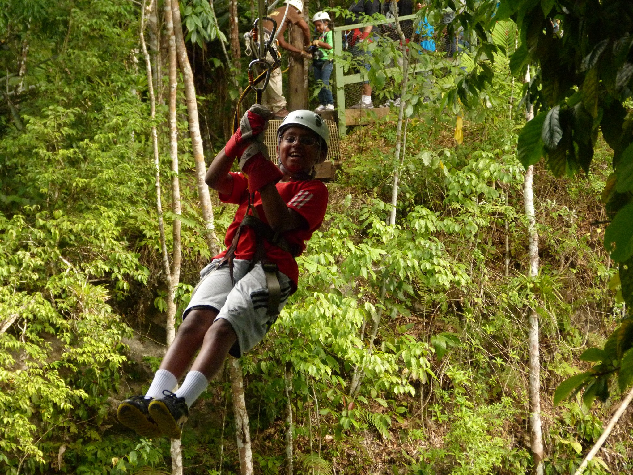 adventure in jungle essay Free essays on jungle trekking get help with your writing 1 through 30.