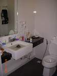 Our new digs - the bathroom (sink/toilet)