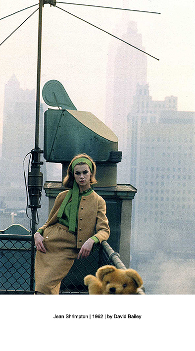 David Bailey | We'll take Manhattan | Jean Shrimpton | designer fashion blog |  Warmenhoven &amp; Venderbos