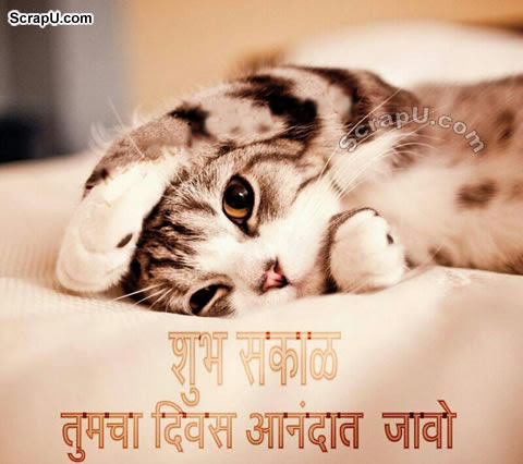 Good Morning Pictures For Love In Marathi Download 14264 72 Good
