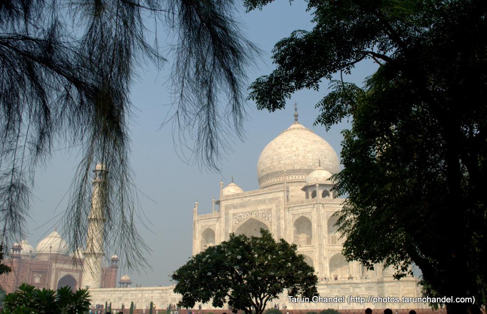 Taj Mahal Agra Trees, Tarun Chandel Photoblog