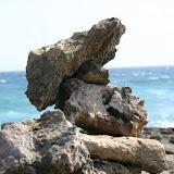 The Rugged Coastline of Aruba