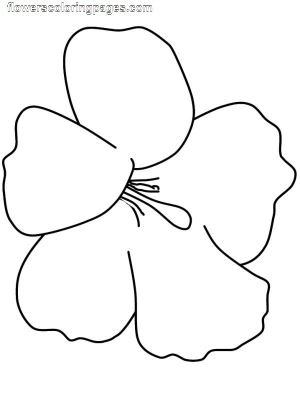 Coloring pages for PRESCHOOLERS Hellokids