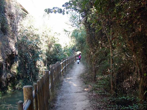 Senderismo: Ruta Botánica de Vila-real
