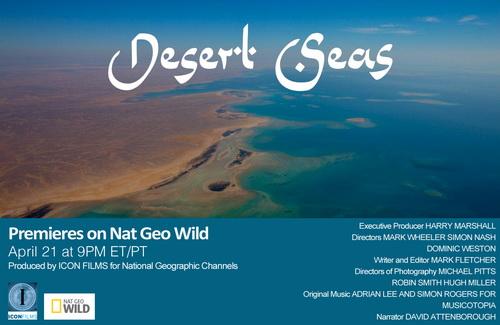 Morza pustyni / Desert Seas (2011) PL.1080i.HDTV.x264 / Lektor PL