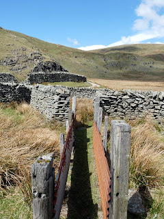 Sheepfold on Gatesgarth Pass