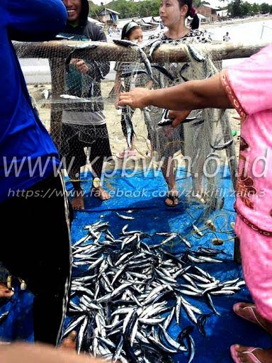 aktivitas nelayan di pantai somba majene