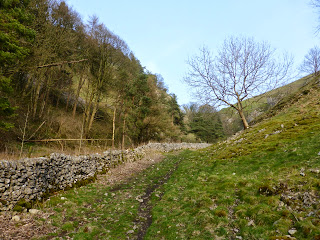 The dale leading away from Coldeaton Bridge