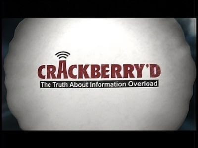 Cyfrowe pokolenie / CrackBerry'd The Truth About Information Overload (2010) PL.TVRip.XviD / Lektor PL