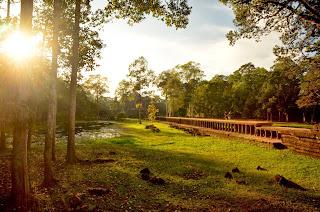 Widok na groblę prowadzącą do Bafuonu - Świątyni z XI wieku, która jeszcze 30 lat temu leżała w gruzach, a rok temu otwarto ją po rekonstrukcji.