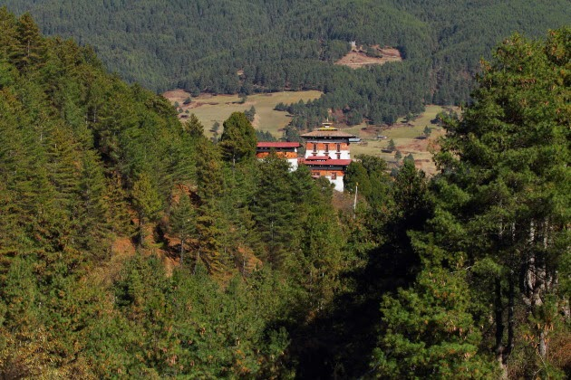 Jakar Dzong -tucked amidst pine trees