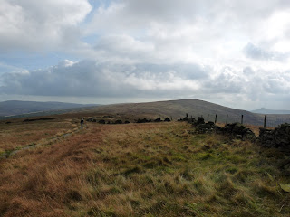 Shining Tor in the distance (and Shutlingsloe)