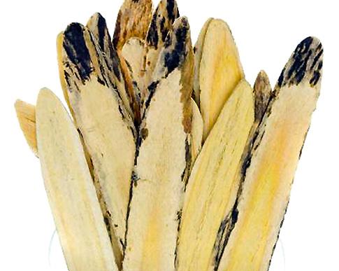 aastragalus Kandungan Phytochi