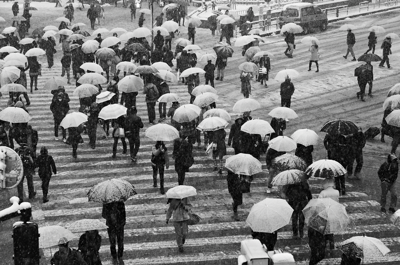 Shinjuku Mad - Love spells cast jealously white shadows 06