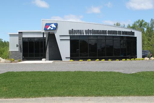 Hopital Vétérinaire Coeur de Lotbinière (Vetcom), 140 Rue Olivier, Laurier-Station, QC G0S 1N0, Canada, Animal Hospital, state Quebec