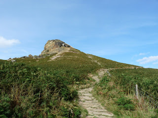 Descending back down behind Roseberry Topping