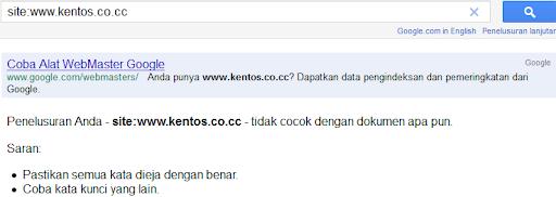 Domain Gratis Co.CC Menghilang dari Index Google