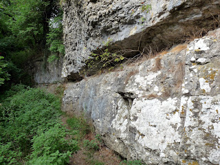 "Limestone ""Clffs"" in Cales Dale"