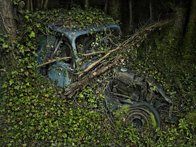 Abandoned Antique Cars Reclaimed By Nature Seen On www.coolpicturegallery.us