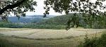 Das Landschaftsbild hier: Wiesen, Felder, Wald. Sehr zersiedelt.