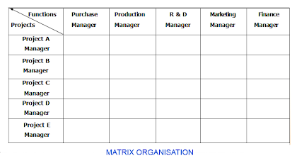 matrix organisation