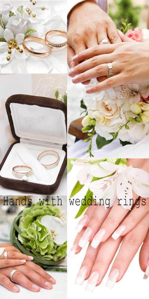 Stock Photo: Hands with wedding rings