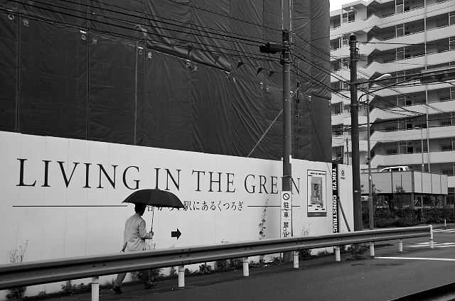 Shinjuku Mad - In the green 21