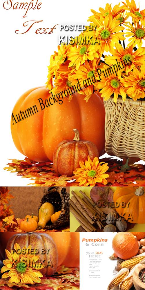 Stock Photo: Autumn Background and Pumpkins