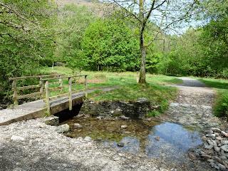 Bridge in White Moss Woods