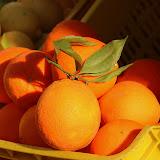 Fresh Citrus At The Roadside Market - Amalfi Coast, Italy